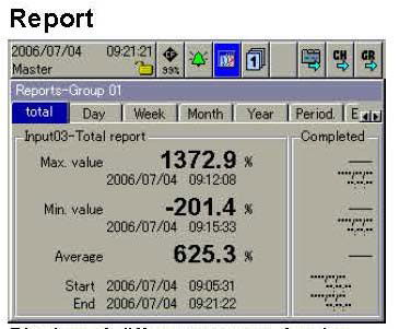 DataVu 7 Paperless Recorder Report Screen